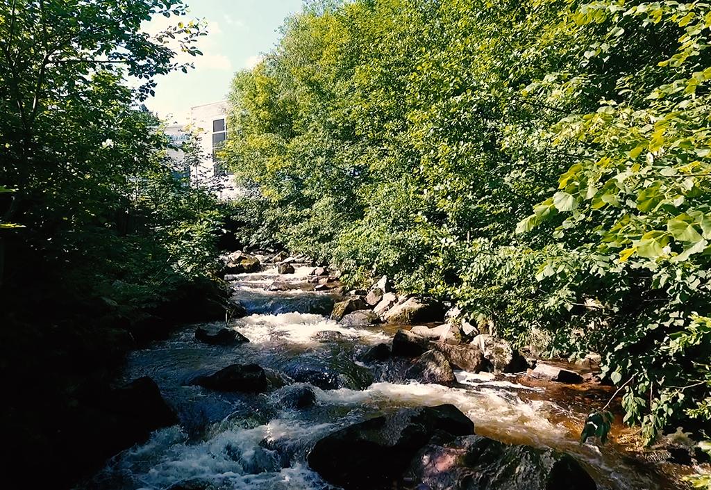 Erstes Wasserrecht zur Nutzung des Flusses Gutach als Energielieferant